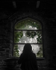 Things always seem greener on the other side.  #Toledo #BlackAndWhite #ColorPop #ColorSplash #AbandonedNature #Leaves #Ivy #Abandoned #Library #Church #Arches #Architecture #Light #WindowLight #Window #Architecture #Stone #UrbanExplorer #Urbex #ToledoOhio (kallyone) Tags: toledoohio architecture stone church urbanexplorer windowlight toledo urbex colorpop arches colorsplash abandonednature ivy window light leaves ohio blackandwhite library abandoned