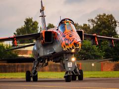SEPECAT - Jaguar (davepickettphotographer) Tags: specat jaguar raf taxi ground run lastgoodbye davepickettphotographer olympuscamera uk rafcosford photography day cosford gb jag xx119 spotty spots aviation aircraft shropshire