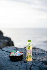 : Sumikko Sushi (Nazra Zahri) Tags: stuffed toy tojinbo fukui sunset tea green rocks naturalmonument  japan picnic sea japansea