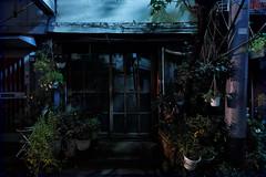untitled (Noisy Paradise) Tags: tokyo night entrance street japan longexposure door sigmadp0quattro foveon