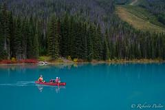 Emerald Lake (British Columbia) (robertopastor) Tags: amrica canada canadianrockiesmountain canad fuji montaasrocosas robertopastor viaje xt2 xf1024mmf4 emerald lake british columbia
