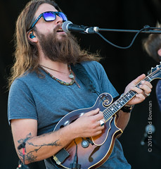 Greensky Bluegrass (A Creative Journey Photography) Tags: loufest stlouis musicfestival 2016 forestpark concert outdoorconcert greenskybluegrass bluegrass