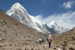 The path the Base Camp (D A Scott) Tags: everest base camp trek trekking hiking hike mountains himalayas asia nepal