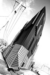 My city (250) (kruser1947 (all killer no filler)) Tags: acutehouse bw blackwhite monochrome architecture melbourne dog