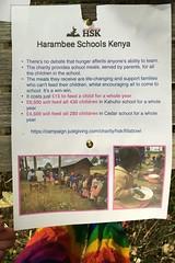 11 charity (Margaret Stranks) Tags: hiddensqu4reminifestival colnstaldwyns gloucestershire uk fundraiser charity harambeeschoolskenya