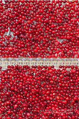 Cranberries (vas_eka) Tags: canada sweden anticold autumn awakening berries bio breakfast chef cleaneating cooking cranberry culinary delicious dessert detox diet fall fitfood fitness food foodstyling foodie foodphoto fresh fruits gourmet hautecuisine healthy homemade ingredients kitchen meal menu motivation natural nutrition rawvegan red restaurant rustic seasonal serviceware stilllife styling stylish superfood sweet tableset tableware tasty traditional travel vegan vegetarian wellness yummy