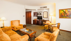 Habitacin de la Suite Carlton  Hotel Dann Carlton Cali (Hotel Dann Carlton Cali) Tags: travel cali hotel bedroom puerta colombia carlton sala persiana sofa espejo co lampara cama hospitality hoteles guestroom cuadro habitacion alojamiento dann armario valledelcauca hoteldanncarlton solteron fotografiadehoteles suitecarlton