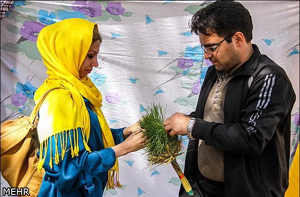 Иран, Сиздах-бе-дар, Новруз