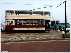 Old Liverpool tram (exacta2a) Tags: liverpool transport birkenhead merseyside tramcars