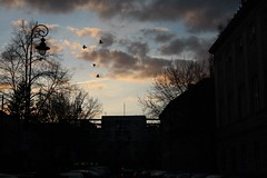 Clouds of sunset.   (series) (halina.reshetova) Tags: street city pink blue trees roof sunset sky people sun green cars nature birds yellow clouds canon buildings dark grey evening spring sundown violet silhouettes poland april warsaw gleam springtime settingsun lampposts canoneos1000d 23042013