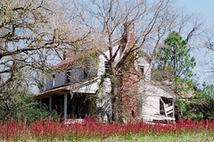 Franklin homeplace overlooking a field of fireweed (anmyk) Tags: slr abandoned film field farmhouse neglect rural 35mm ga georgia lens 50mm prime weeds fuji superia decay olympus 400 fujifilm weathered f18 18 derelict zuiko abandonment om2 dilapidated malfunction fireweed deepsouth xtra collapsing om2n primelens fallingin omseries farmhome bullochcounty damagedlens lensmalfunction anomyk aperturebroken lensdamaged