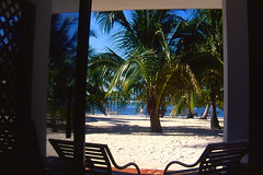 View from the room - DTBR (dlalcyon) Tags: scuba diving scubadiving caymanbrac divitiarabeachresort