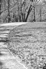 - (Mark McD Photos) Tags: blackandwhite bw monochrome bench happy pentax takumar pennsylvania sony pa m42 monday smc lehighvalley easton 5014 hbm nex leadingline nex5 markmcdphotos