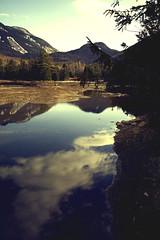 (Valerie Manne) Tags: lake mountains reflection nature vertical spring adirondacks adirondack placid