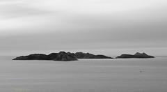 navegante solitario [Explored] (Rafa Lorenzo) Tags: rasbaixas galicia ces radevigo