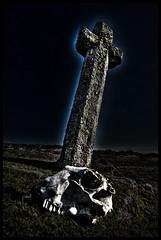 Windy Post Cross, Nr Pew Tor, Dartmoor. (DJMayne) Tags: skull granite moors dartmoor pewtor windypostcross