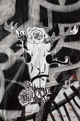 DSC_0099-60 (Studio5Graphics) Tags: seattle streetart art tag may postalley tagger slaptag 2013 slaptagger