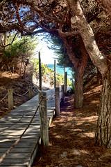 08071611 Menorca hols -1 (light&shade2) Tags: menorca spain nikon 750 gezz farrar landscapes mountain walks potraits sun sea nikond750