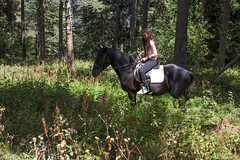 5D_IMG_6582 (Jeroen Kransen) Tags: bulgarije bulgaria    horse horseback equestrian horseriding paardrijden paardrit rodopen rhodopes