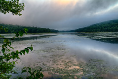 In-A-Different-Light (desouto) Tags: hdr nature water stones lakes ponds flowers sky clouds stream