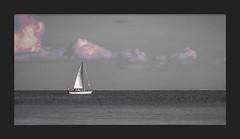 """Navigare necesse est"" (bengtson.jonas) Tags: bt boat white black sailing water vatten sommarnoje fotosondag fs160828"