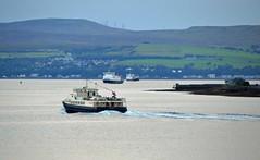 A-B-CC (Zak355) Tags: rothesay isleofbute bute scotland scottish ferries mvclydeclipper calmac mvargyle mvbute riverclyde ship shipping boat