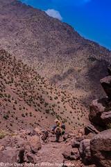 the man and the mountain (Vitro Dias) Tags: aventura deserto marrakeche marrocos montanha outside toukal marrakech