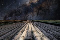 Perseid Meteors (kubaszymik) Tags: night long exposure sky milky way astrophoto stars perseids mteors starry canon fields gliwice silesia poland
