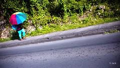 sur la route (Jack_from_Paris) Tags: r0001658 ricoh gr apsc capture nx2 lr colors guadeloupe gwada antilles franaises couleurs de rue soleil sun ombre route road