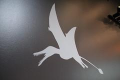 Pterosaur stencil (horticulturehijinks) Tags: pterosaur dinosaur