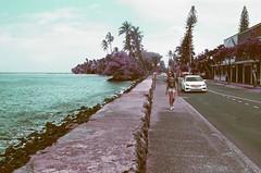 Front Street, Lahaina, Maui (bloodyeyeballs) Tags: lomochrome lomochromepurple film 35mmfilm filmphotography filmisnotdead analogue buyfilmnotmegapixels ishootfilm staybrokeshootfilm thefilmcommunity leica leicam3 summilux50 hawaii maui lahaina streetphotography streetphoto leicam purple lomography lomographypurple