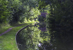 20160918_Green (Damien Walmsley) Tags: green canal stratfordcanal water reflections trees towpath