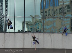 Window Cleaner Wave (Belinda Fewings (3 million views. Thank You)) Tags: belindafewings panasoniclumixdmc bokeh city street seaside colour colourful artistic pbwa creativeartphotograhy creative arty beautiful beautify beauty lovely outdoors outside out best depthoffield chicago illinois windows window cleaning men male sitting usaunitedstatesofamerica usa reflecting reflects skyscrapers