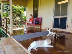 Grove Farm (6 of 16) (Chuck 55) Tags: grove farm kauai hawaii