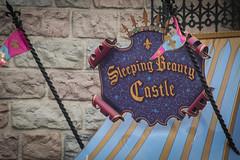 Sleeping Beauty Castle (R. Zavala) Tags: disney disneyland disneylandresort disneycaliforniaadventure fantasyland sleepingbeautycastle sleepingbeauty