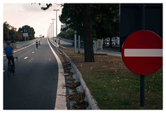 wrong-way driver (B.enn) Tags: carfree sunday wrongway driver ghent belgium gent flyover autoloze zondag 2016