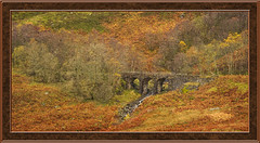 Disused Viaduct (williamwalton001) Tags: railway red landscape colourimage stone bridge weather woodlands winter framed fence forest borders scotland trolled pinnaclephotograghy daarklands legacy