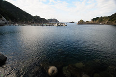 20160903-DS7_3262.jpg (d3_plus) Tags:  a05 d700 street fish port apnea zoomlense   watersports sky    nikon  flower   tamronspaf1735mmf284dildaspherical  nikond700 touring scenery   nikon1 wideangle nature izu sea  minamiizu underwater superwideangle skindiving japan   tamronspaf1735mmf284dildasphericalif tamronspaf1735mmf284dild nikkor tamronspaf1735mmf284  drive   marinesports snorkeling tamron1735   diving   fishingport   shizuoka  bloom   plant