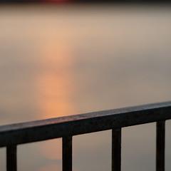 Railing against the sun (Andrew Malbon) Tags: railings fence pier handrail solent eastney langstoneharbour tide lowtide sunrise autumn autumncolour depthoffield shortdepthoffield shore sun leica m9 leicam9 rangefinder manualfocus manual silence dawn dawnlight solitary urbex