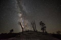oh milky_8100718 (steve bond Photog) Tags: yosemitenationalpark milkyway nikon california nationalpark