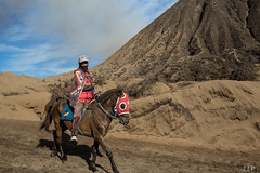WB1A2339-337 (Lauren Philippe) Tags: bromo du11juinau25juin2016 indonesia indonsie java mountbromo ascensionbromo