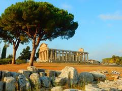 Paestum 2. (Mary-Bel (Marie F Papin)) Tags: paestum italie temple athna marybel
