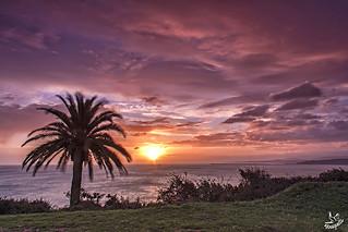 Elegida entre las 5 imágenes más impresionantes de Flickr del 2013