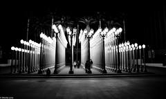 Urban Lights (Moritz Lino) Tags: california county city trees light urban art beach museum la los paradise angeles palm angels lacma of discoverla moritzlino