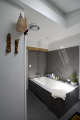 Master Bath 9 (evaxebra) Tags: house bathroom master remodel bozena remodeled