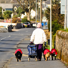 112/365 Old lady and her dogs! (Jim Monan) Tags: day112 day112365 3652013 365the2013edition 22apr13