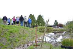 Dibble in the foreground as guests admire the wetland. (BCWF Wetlands Education Program) Tags: bc conservation environmental environment restoration langley wetland arbourday citizenscience bcwf townshipoflangley langleyenvironmentalpartnerssociety wetlandseducationprogram