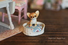 woof (*Joyful Girl  Gypsy Heart *) Tags: dog kitchen girl wall one miniature bed heart joyful gypsy shabby roombox