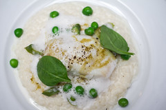Poached cod, pea and asparagus risotto at Colorova (LostNCheeseland) Tags: food fish paris green lunch cod savory risotto cabillaud colorova colorovapatisserie