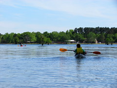 Lowcountry Unfiltered - Lake Marion Ghost Town Paddle - April 2013 (293) (greenkayak73) Tags: friends beagle nature america fun lucy southcarolina adventure kayaking ghosttown mrrussell riverdog lakemarion greenkayak73 randomconnections photopaddling lowcountryunfiltered nitrorev johnatgcc rockscemetery